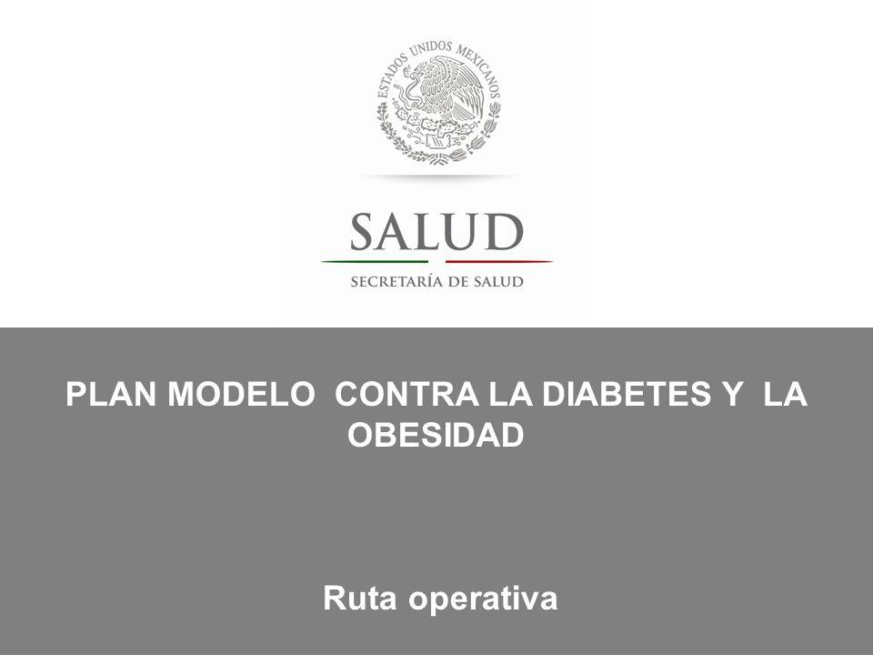 PLAN MODELO CONTRA LA DIABETES Y LA OBESIDAD Ruta operativa