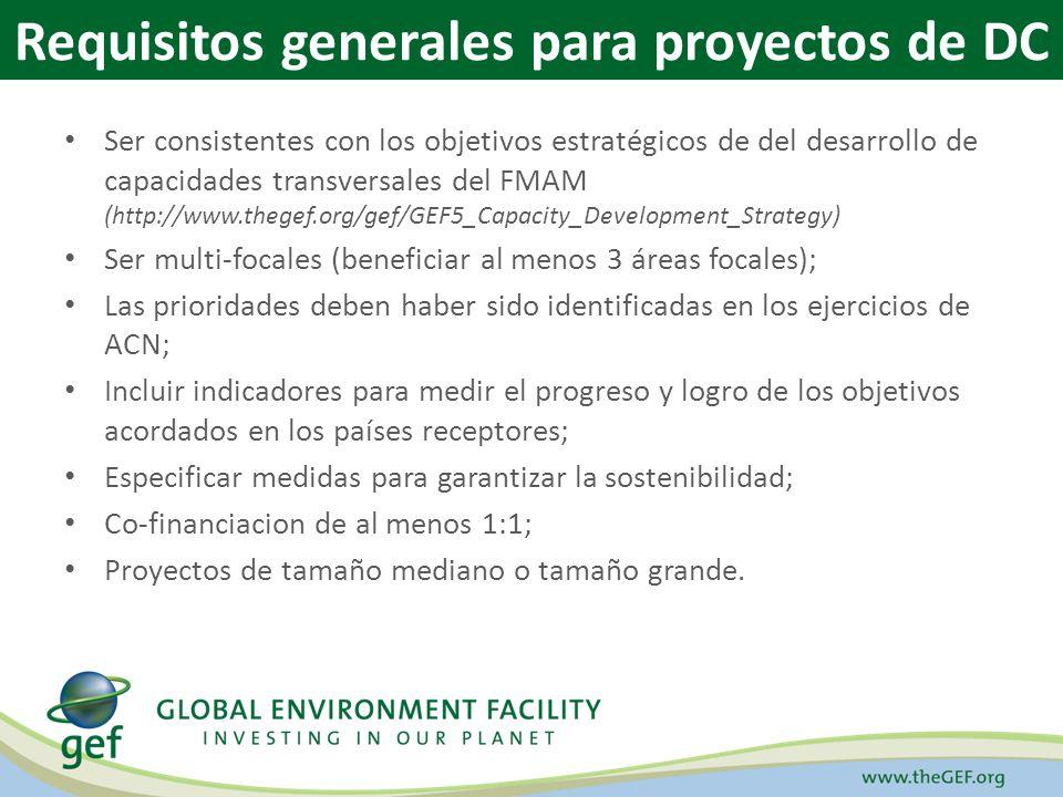 Ser consistentes con los objetivos estratégicos de del desarrollo de capacidades transversales del FMAM (http://www.thegef.org/gef/GEF5_Capacity_Devel