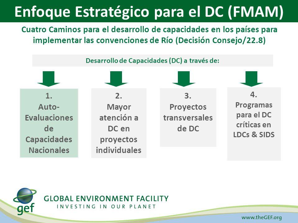 Iniciativa de Desarrollo de Capacidades (FMAM/PNUD, 2000) Enfoque Estratégico para el Desarrollo de Capacidades (FMAM, 2003) Ejercicios de Auto-Evaluación de la Capacidad Nacional – ACN (2002 – 2010) Apoyo del Programa Corporativo a los ACNs (FMAM/PNUD/PNUMA, 2005 – 2010) Cronología del DC en el FMAM