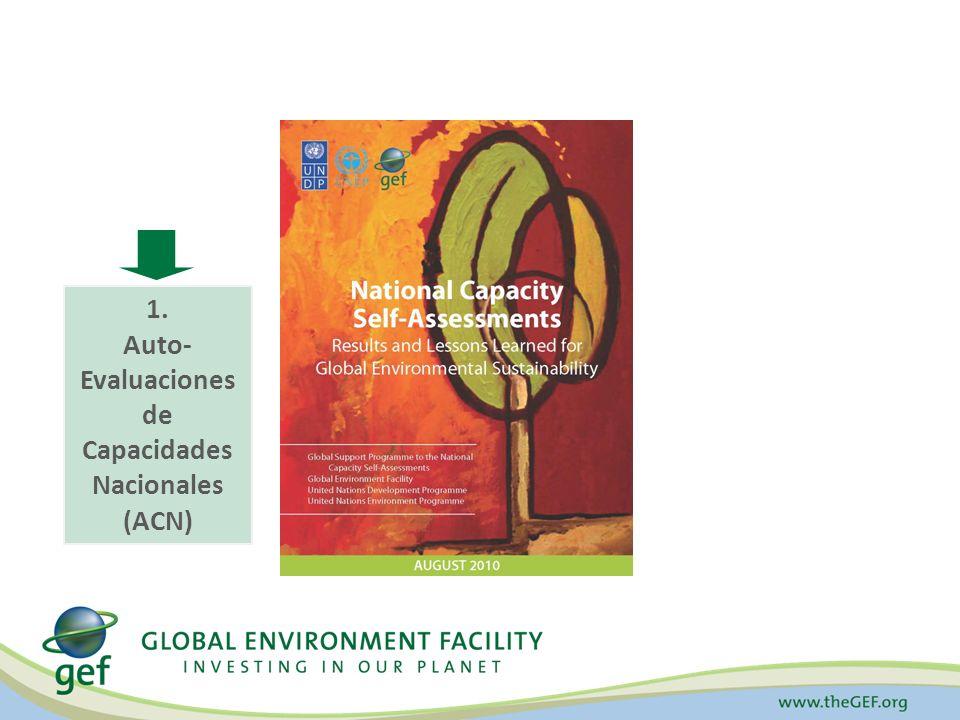 A través del fortalecimiento de capacidades claves para implementar los Acuerdos Multilaterales Ambientales e integrar los bienes ambientales globales en el procesos de toma de decisión Estrategia Transversal del Desarrollo Capacidades Apoyar a los países a cumplir y sostener objetivos ambientales ¿Cómo?