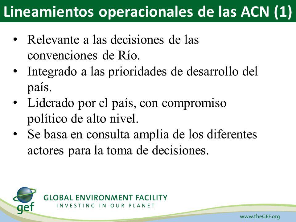 Relevante a las decisiones de las convenciones de Río. Integrado a las prioridades de desarrollo del país. Liderado por el país, con compromiso políti