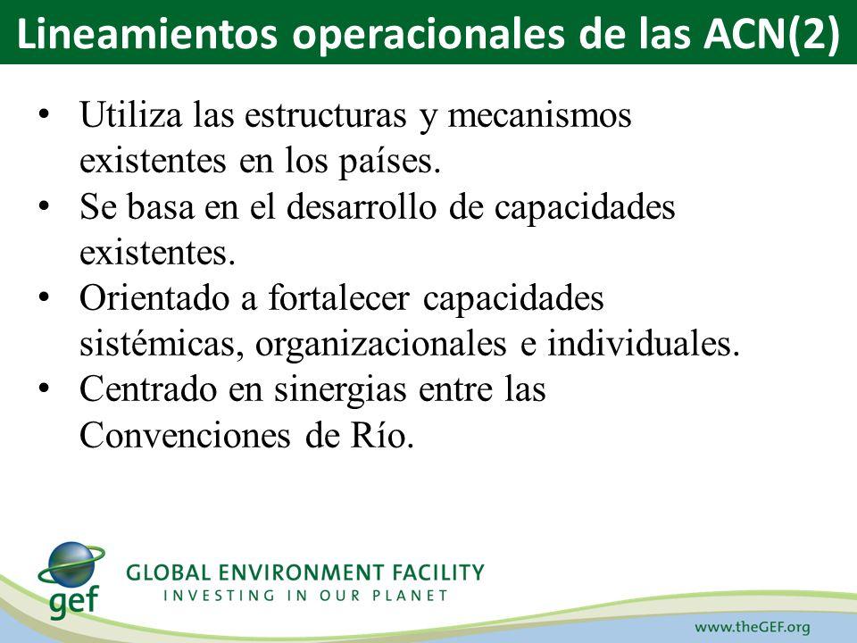 Utiliza las estructuras y mecanismos existentes en los países. Se basa en el desarrollo de capacidades existentes. Orientado a fortalecer capacidades