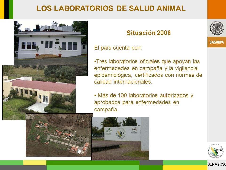 SENASICA Situación 2008 El país cuenta con: Tres laboratorios oficiales que apoyan las enfermedades en campaña y la vigilancia epidemiológica, certifi