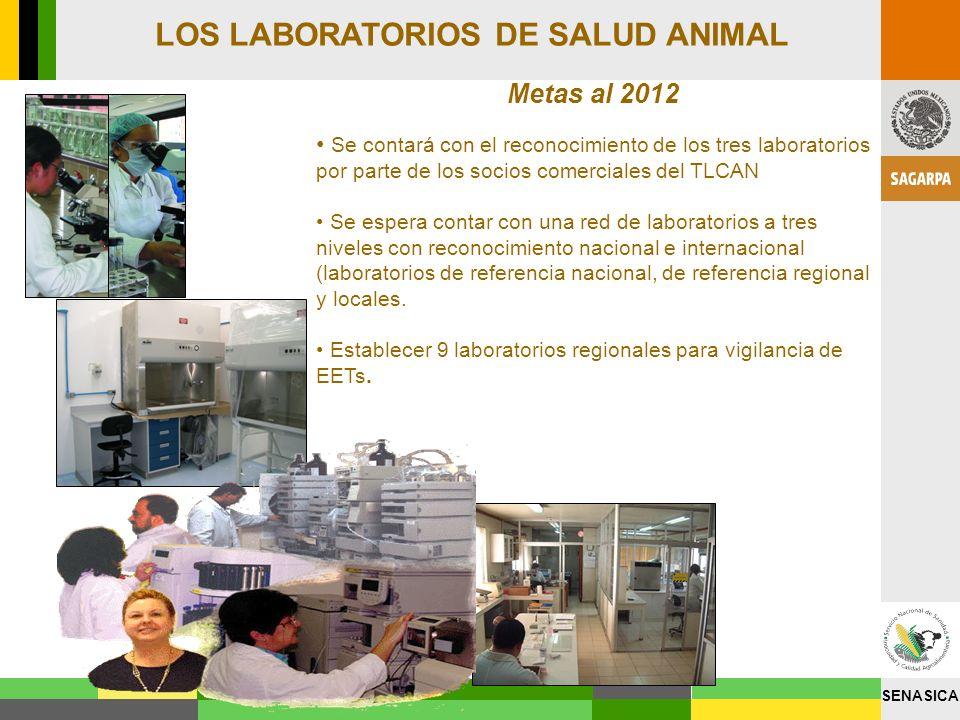 SENASICA Metas al 2012 Se contará con el reconocimiento de los tres laboratorios por parte de los socios comerciales del TLCAN Se espera contar con un