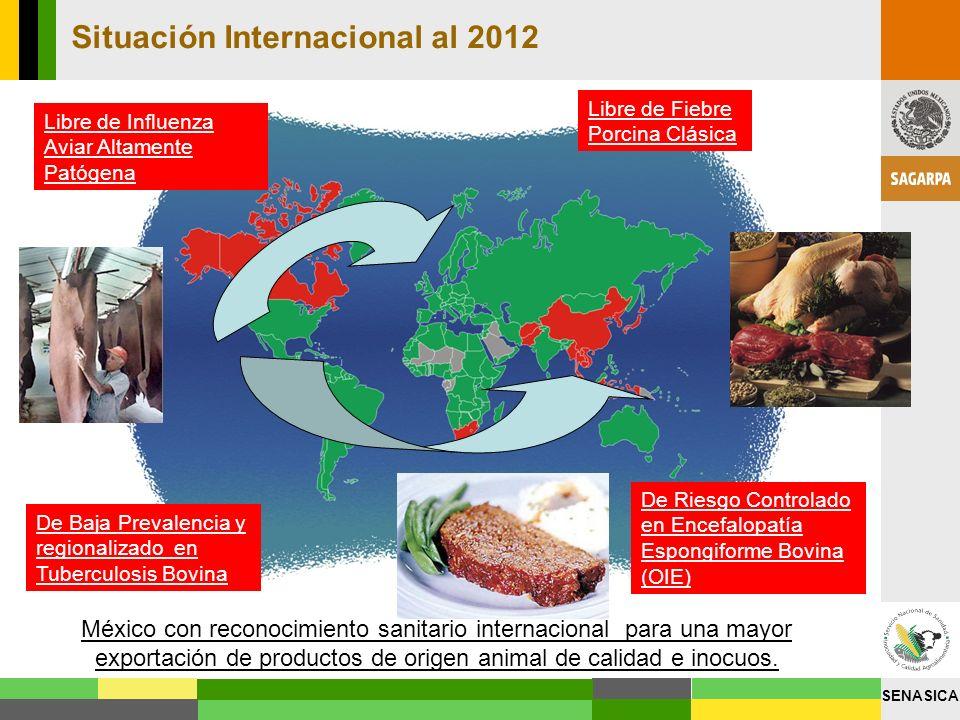 SENASICA Libre de Fiebre Porcina Clásica Situación Internacional al 2012 De Riesgo Controlado en Encefalopatía Espongiforme Bovina (OIE) De Baja Preva