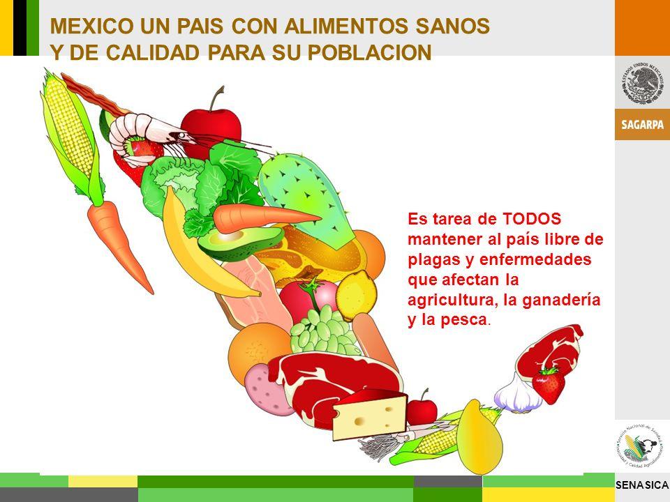 SENASICA Es tarea de TODOS mantener al país libre de plagas y enfermedades que afectan la agricultura, la ganadería y la pesca. MEXICO UN PAIS CON ALI