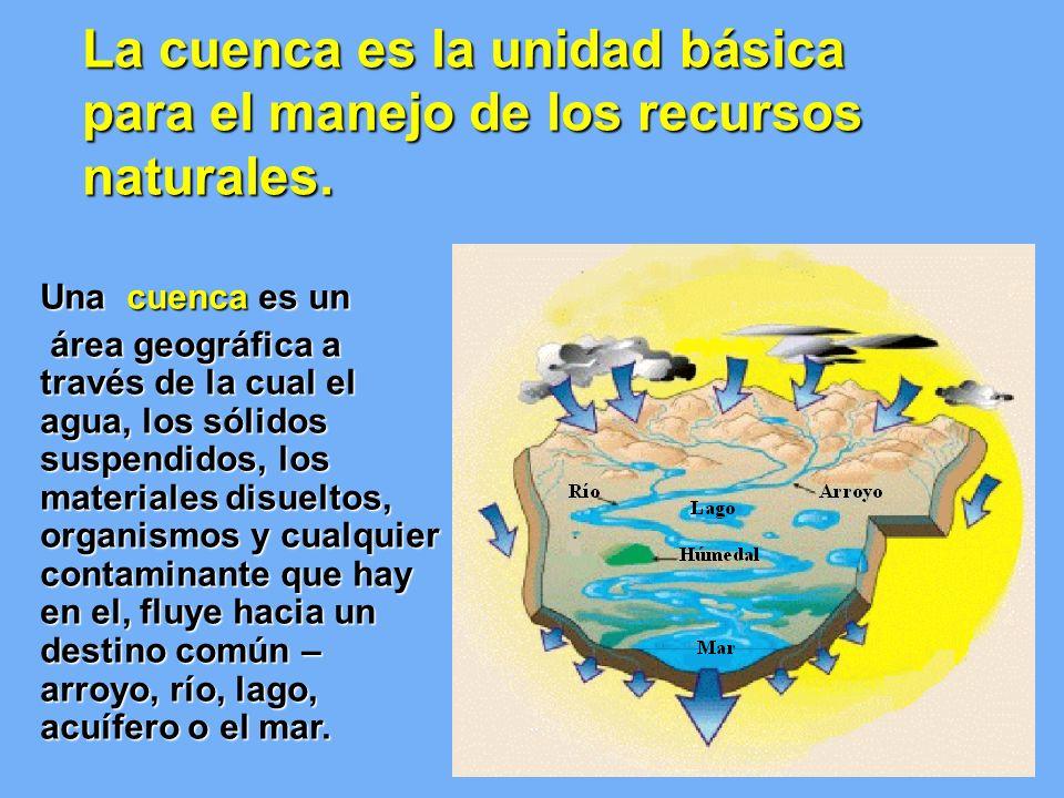 La cuenca es la unidad básica para el manejo de los recursos naturales. Una cuenca es un área geográfica a través de la cual el agua, los sólidos susp