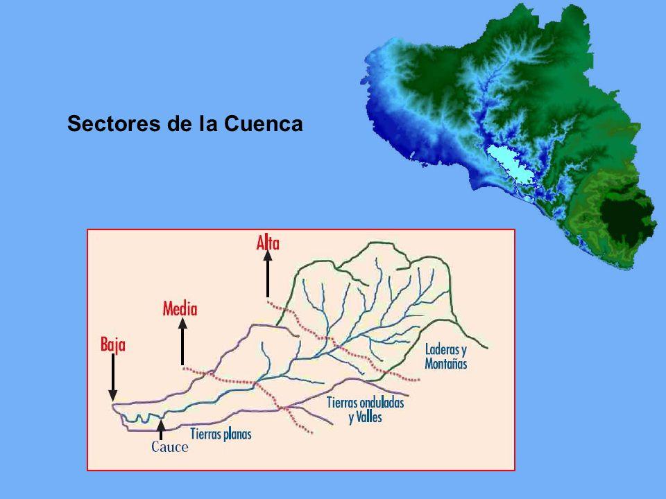 Sectores de la Cuenca