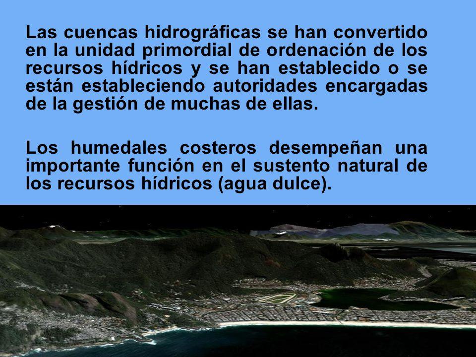 Las cuencas hidrográficas se han convertido en la unidad primordial de ordenación de los recursos hídricos y se han establecido o se están establecien