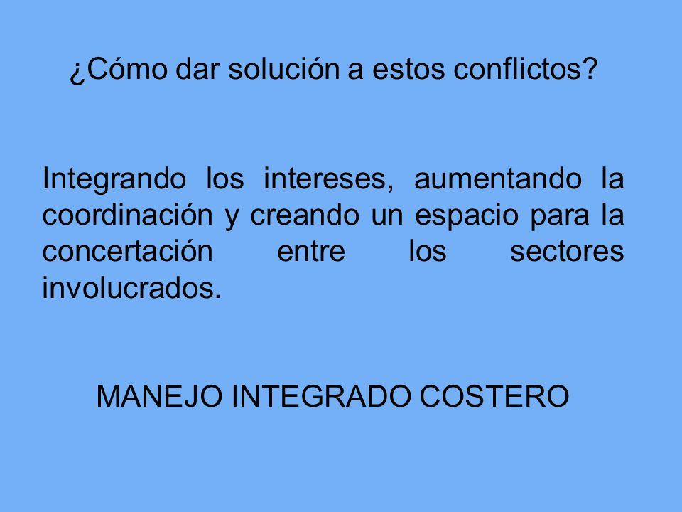 ¿Cómo dar solución a estos conflictos? Integrando los intereses, aumentando la coordinación y creando un espacio para la concertación entre los sector