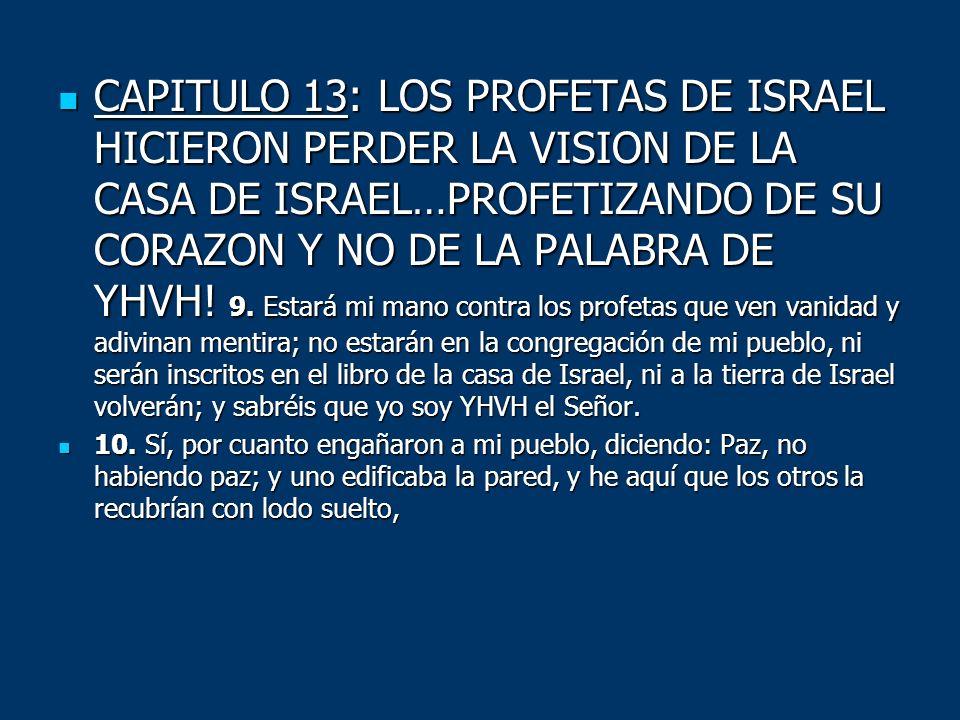 CAPITULO 13: LOS PROFETAS DE ISRAEL HICIERON PERDER LA VISION DE LA CASA DE ISRAEL…PROFETIZANDO DE SU CORAZON Y NO DE LA PALABRA DE YHVH! 9. Estará mi