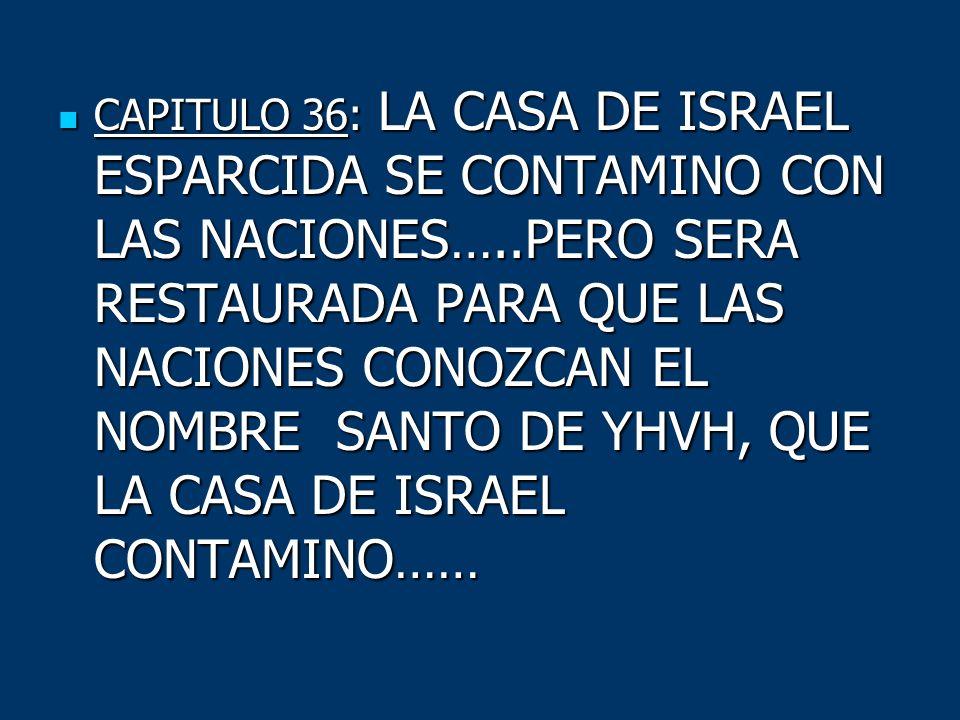 CAPITULO 36: LA CASA DE ISRAEL ESPARCIDA SE CONTAMINO CON LAS NACIONES…..PERO SERA RESTAURADA PARA QUE LAS NACIONES CONOZCAN EL NOMBRE SANTO DE YHVH,