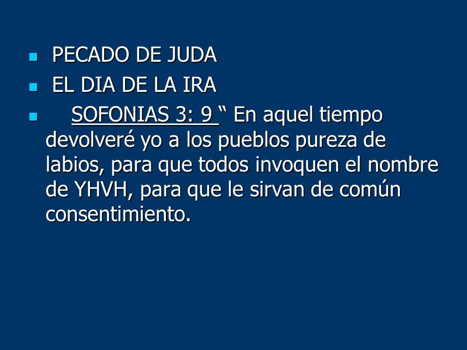 PECADO DE JUDA PECADO DE JUDA EL DIA DE LA IRA EL DIA DE LA IRA SOFONIAS 3: 9 En aquel tiempo devolveré yo a los pueblos pureza de labios, para que to