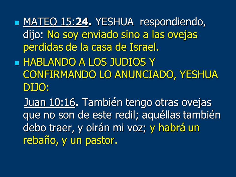 MATEO 15:24. YESHUA respondiendo, dijo: No soy enviado sino a las ovejas perdidas de la casa de Israel. MATEO 15:24. YESHUA respondiendo, dijo: No soy
