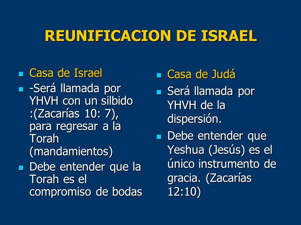 REUNIFICACION DE ISRAEL Casa de Israel Casa de Israel -Será llamada por YHVH con un silbido :(Zacarías 10: 7), para regresar a la Torah (mandamientos)
