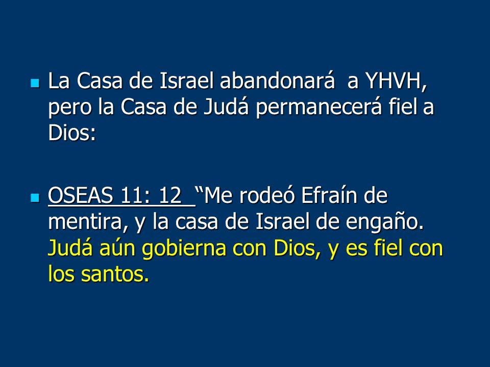 La Casa de Israel abandonará a YHVH, pero la Casa de Judá permanecerá fiel a Dios: La Casa de Israel abandonará a YHVH, pero la Casa de Judá permanece