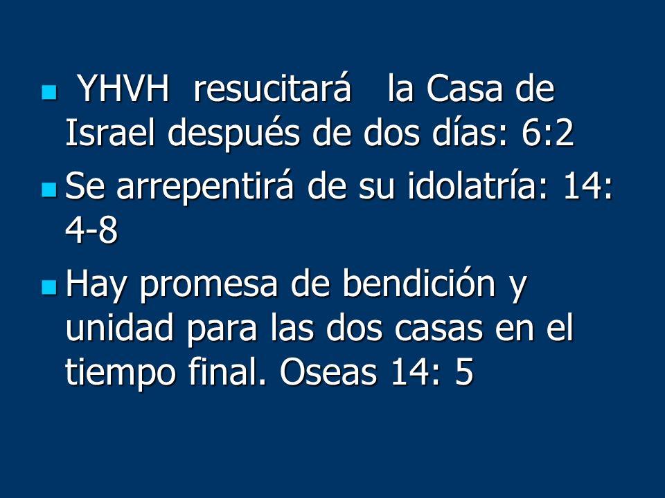 YHVH resucitará la Casa de Israel después de dos días: 6:2 YHVH resucitará la Casa de Israel después de dos días: 6:2 Se arrepentirá de su idolatría: