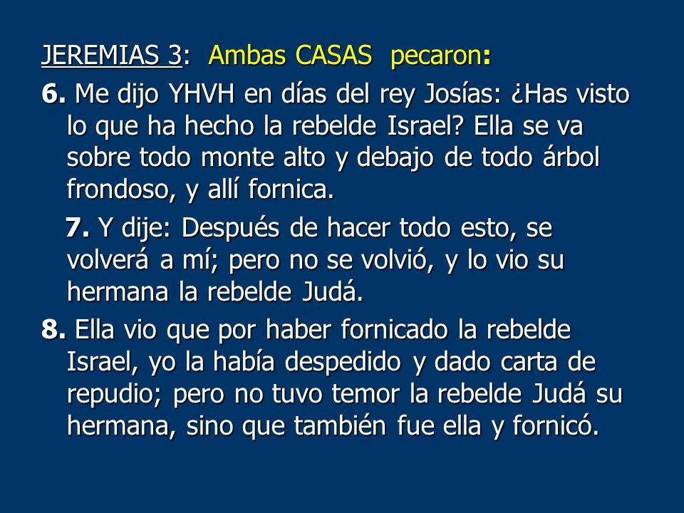 JEREMIAS 3: Ambas CASAS pecaron: 6. Me dijo YHVH en días del rey Josías: ¿Has visto lo que ha hecho la rebelde Israel? Ella se va sobre todo monte alt