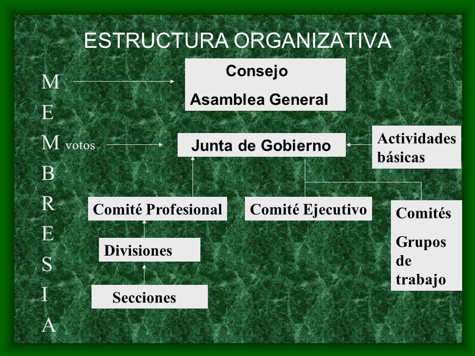 ESTRUCTURA ORGANIZATIVA M E M votos B R E S I A Consejo Asamblea General Junta de Gobierno Comité ProfesionalComité Ejecutivo Actividades básicas Comi