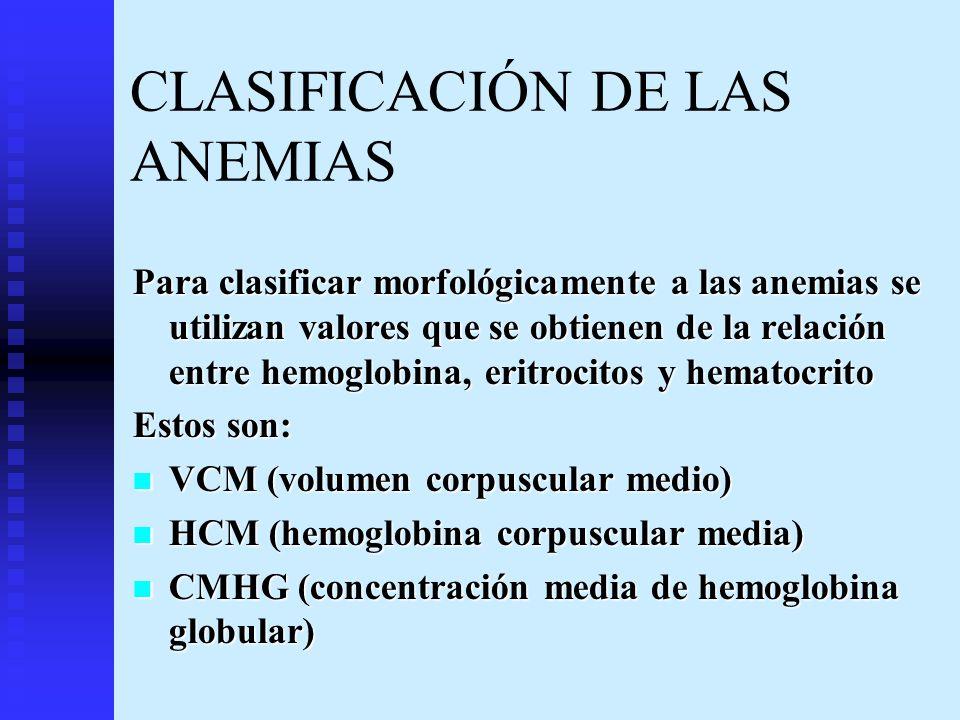 CLASIFICACIÓN DE LAS ANEMIAS Para clasificar morfológicamente a las anemias se utilizan valores que se obtienen de la relación entre hemoglobina, erit