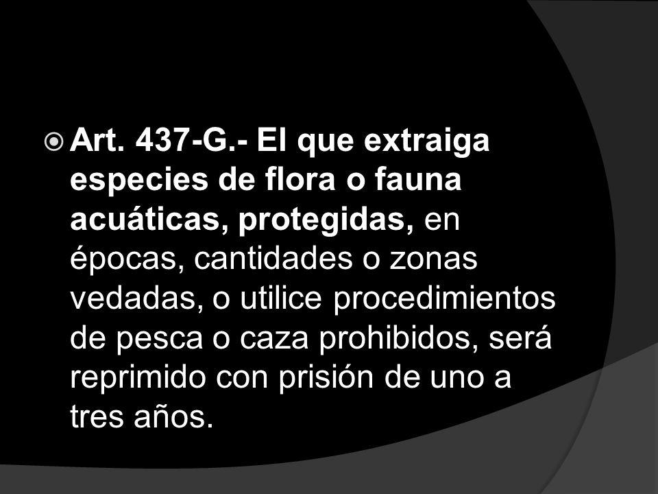 Art. 437-G.- El que extraiga especies de flora o fauna acuáticas, protegidas, en épocas, cantidades o zonas vedadas, o utilice procedimientos de pesca