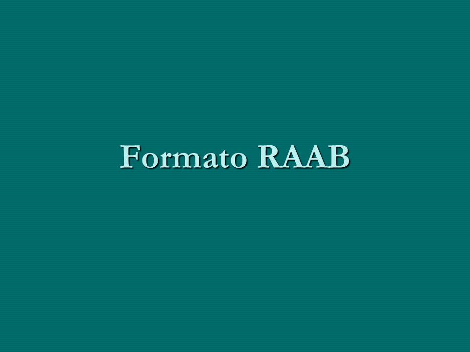 ¿Cómo se relaciona la información obtenida al resumen de los datos en el RAAB.