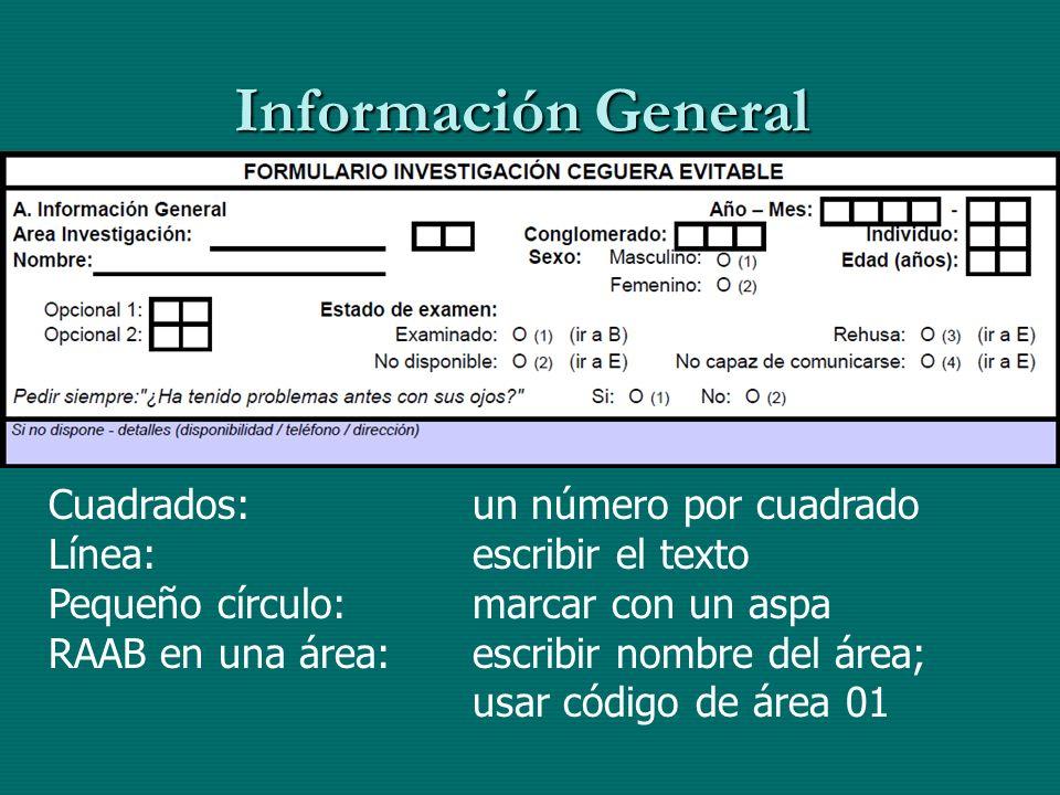 Información General Cuadrados: un número por cuadrado Línea:escribir el texto Pequeño círculo:marcar con un aspa RAAB en una área: escribir nombre del