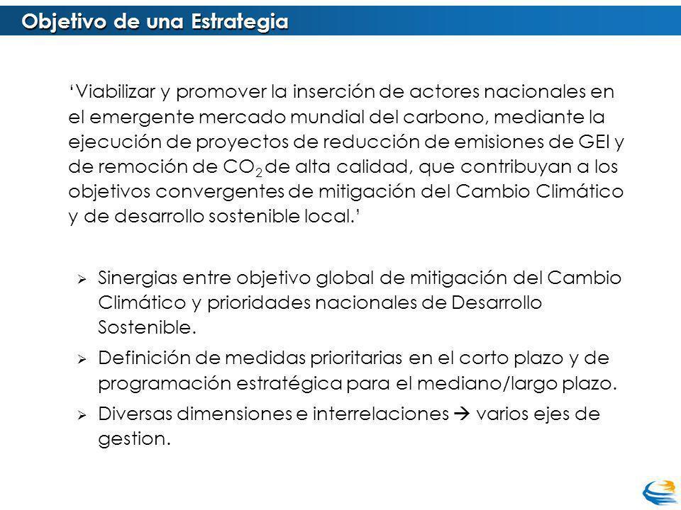 Viabilizar y promover la inserción de actores nacionales en el emergente mercado mundial del carbono, mediante la ejecución de proyectos de reducción