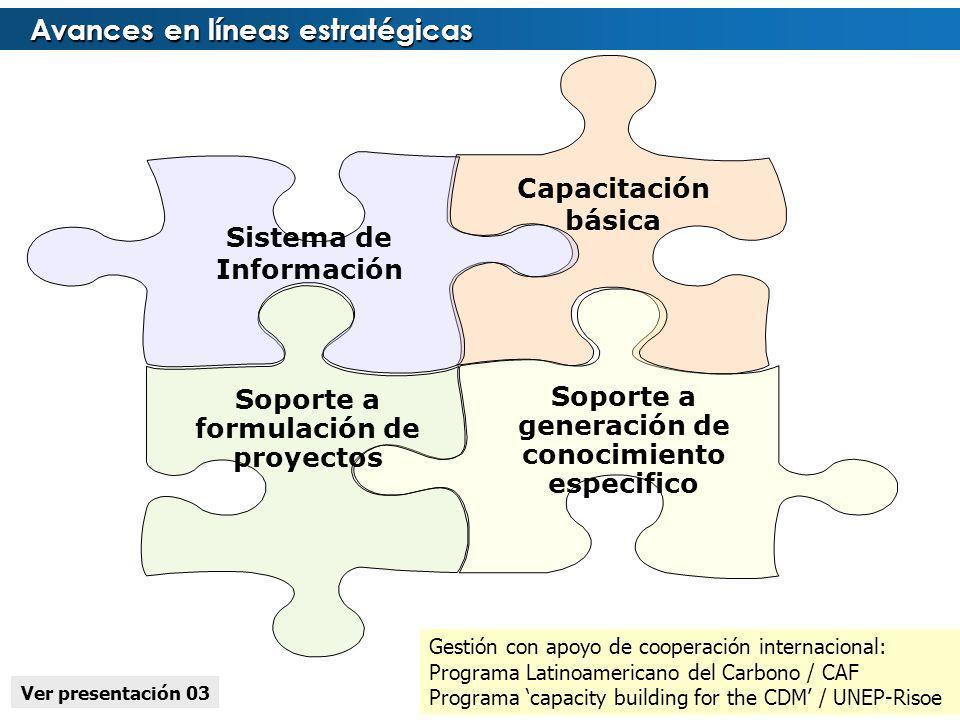 Avances en líneas estratégicas Capacitación básica Soporte a generación de conocimiento especifico Soporte a formulación de proyectos Sistema de Infor