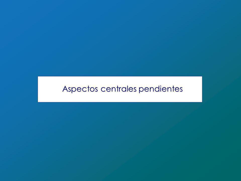 Aspectos centrales pendientes