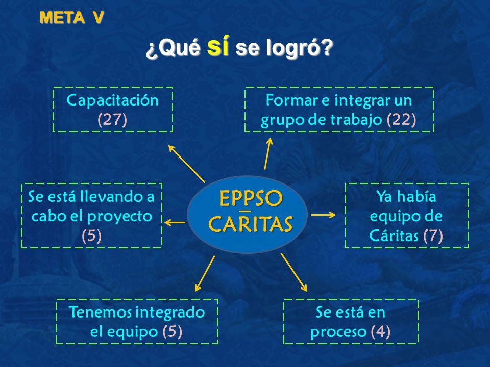 ¿Qué sí se logró? META V Capacitación (27) Formar e integrar un grupo de trabajo (22) Ya había equipo de Cáritas (7) Tenemos integrado el equipo (5) S