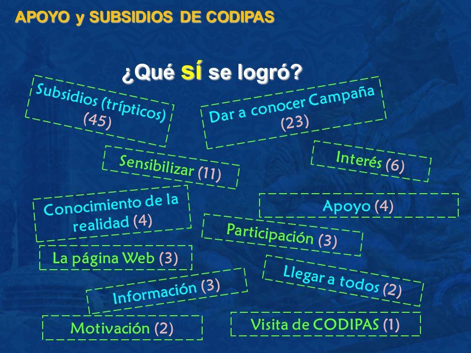 ¿Qué sí se logró? APOYO y SUBSIDIOS DE CODIPAS Subsidios (trípticos) (45) Dar a conocer Campaña (23) Interés (6) Conocimiento de la realidad (4) Sensi