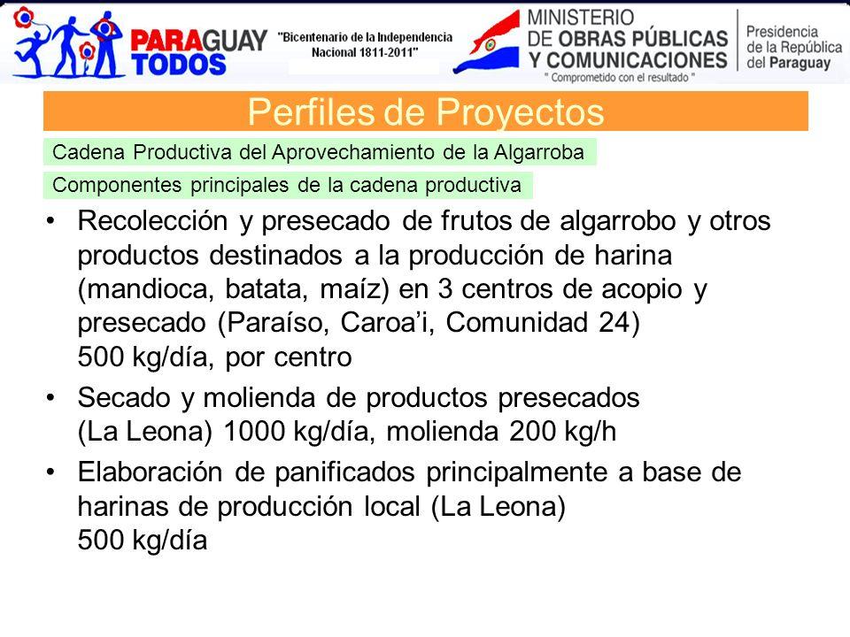 Componentes principales de la cadena productiva Recolección y presecado de frutos de algarrobo y otros productos destinados a la producción de harina