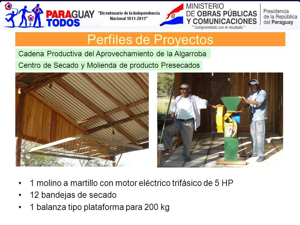 Centro de Secado y Molienda de producto Presecados Perfiles de Proyectos Cadena Productiva del Aprovechamiento de la Algarroba 1 molino a martillo con