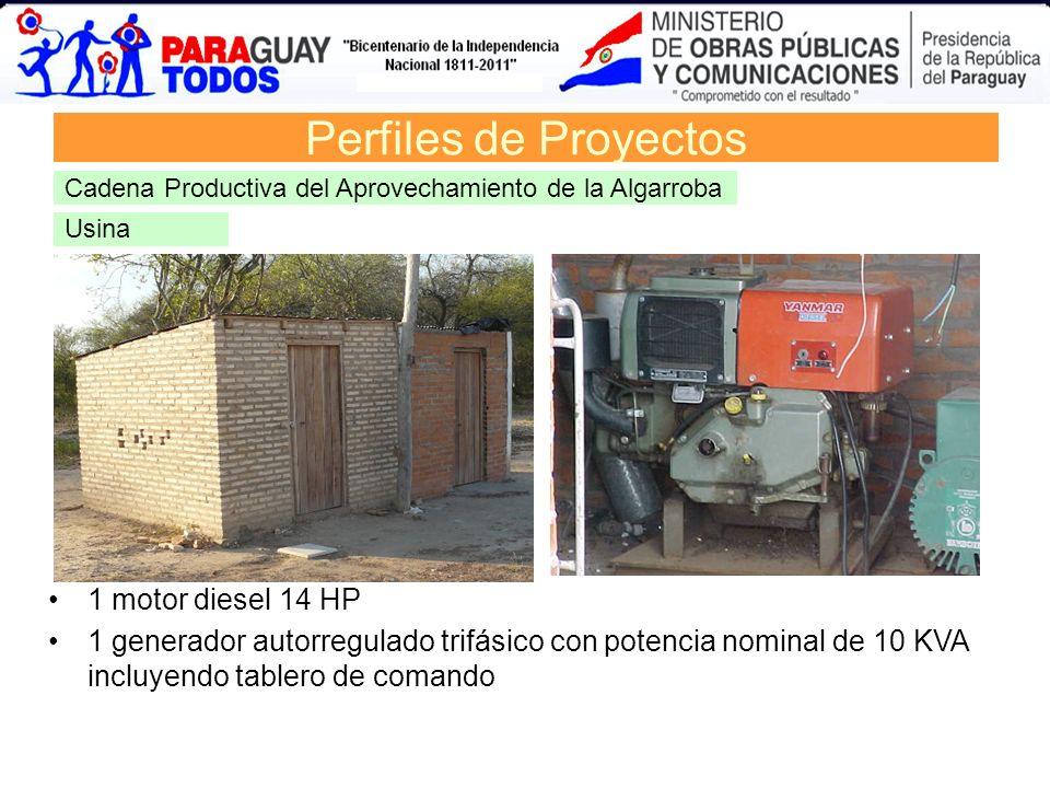 Usina Perfiles de Proyectos Cadena Productiva del Aprovechamiento de la Algarroba 1 motor diesel 14 HP 1 generador autorregulado trifásico con potenci