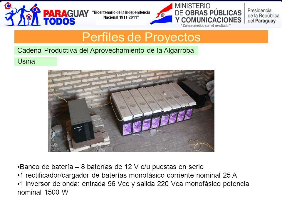 Banco de batería – 8 baterías de 12 V c/u puestas en serie 1 rectificador/cargador de baterías monofásico corriente nominal 25 A 1 inversor de onda: e