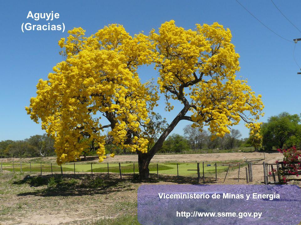 Aguyje (Gracias) Viceministerio de Minas y Energía http://www.ssme.gov.py