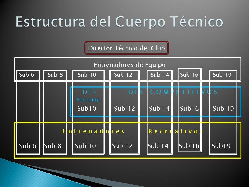 Director Técnico del Club Entrenadores de Equipo Sub 6 Sub 8 Sub 10 Sub 12 Sub 14 Sub 16 Sub 19 DTs DTS C O M P E T I T I V O S Pre Comp. E n t r e n