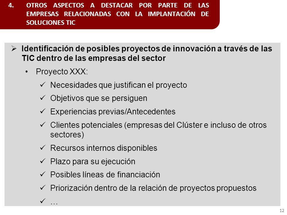 4.OTROS ASPECTOS A DESTACAR POR PARTE DE LAS EMPRESAS RELACIONADAS CON LA IMPLANTACIÓN DE SOLUCIONES TIC 12 Identificación de posibles proyectos de in