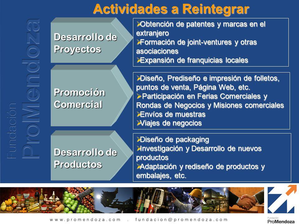 Actividades a Reintegrar Desarrollo de Proyectos Obtención de patentes y marcas en el extranjero Obtención de patentes y marcas en el extranjero Forma