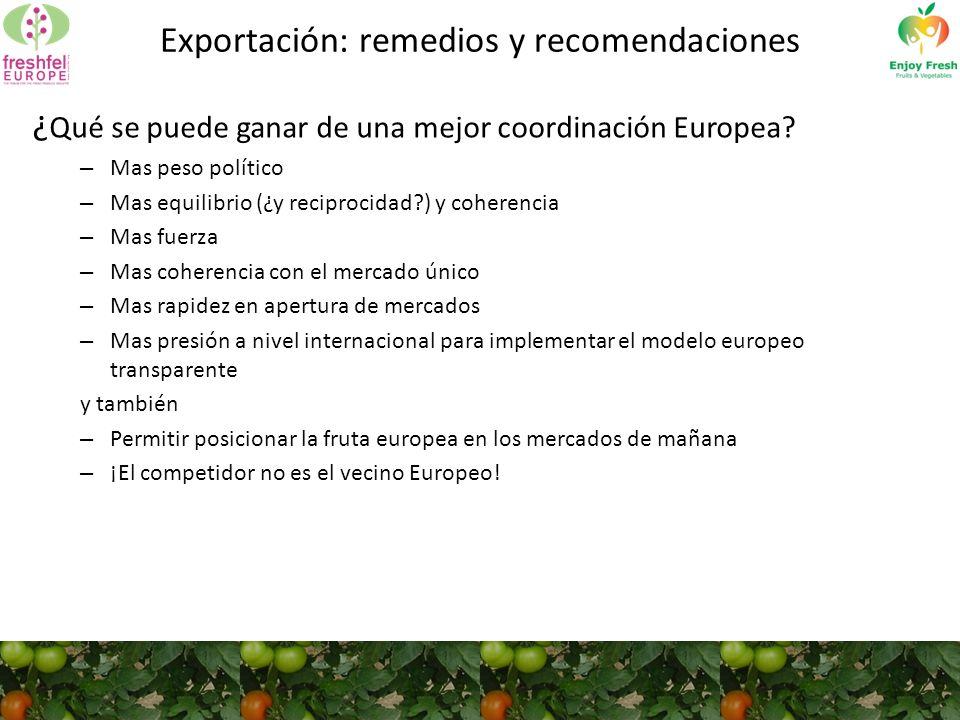 Exportación: remedios y recomendaciones ¿ Qué se puede ganar de una mejor coordinación Europea.