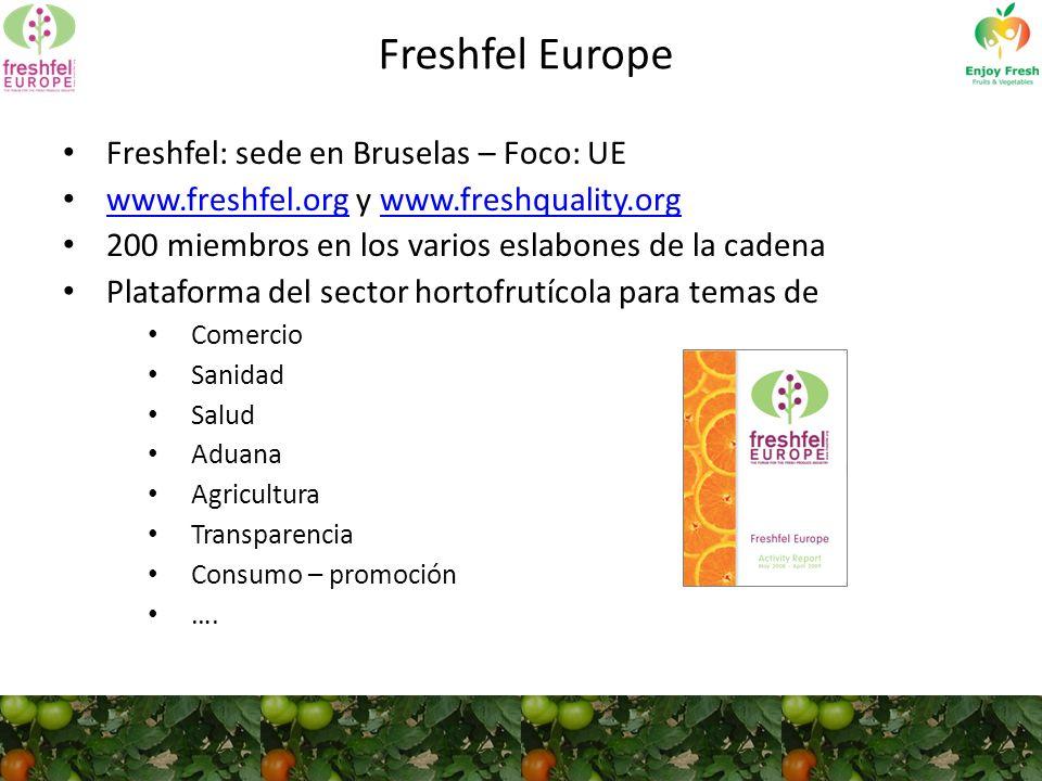 Freshfel Europe Freshfel: sede en Bruselas – Foco: UE www.freshfel.org y www.freshquality.org www.freshfel.orgwww.freshquality.org 200 miembros en los varios eslabones de la cadena Plataforma del sector hortofrutícola para temas de Comercio Sanidad Salud Aduana Agricultura Transparencia Consumo – promoción ….