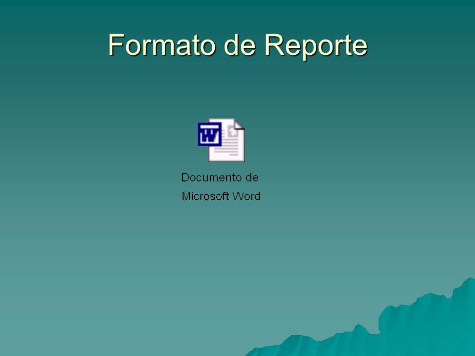 Formato de Reporte