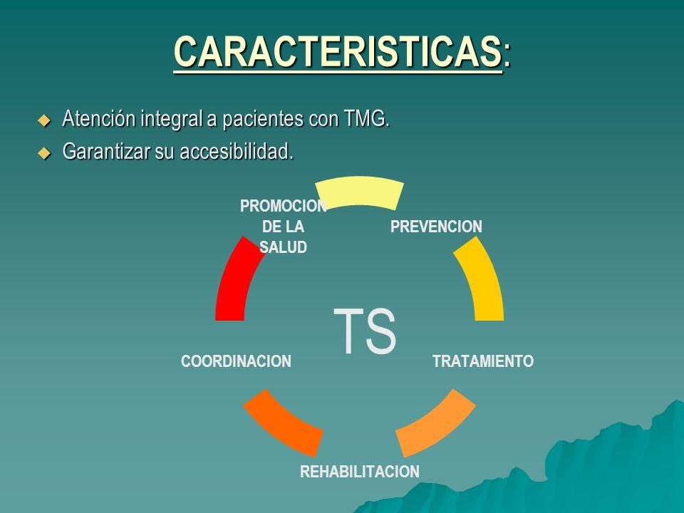 CARACTERISTICAS : Atención integral a pacientes con TMG. Atención integral a pacientes con TMG. Garantizar su accesibilidad. Garantizar su accesibilid