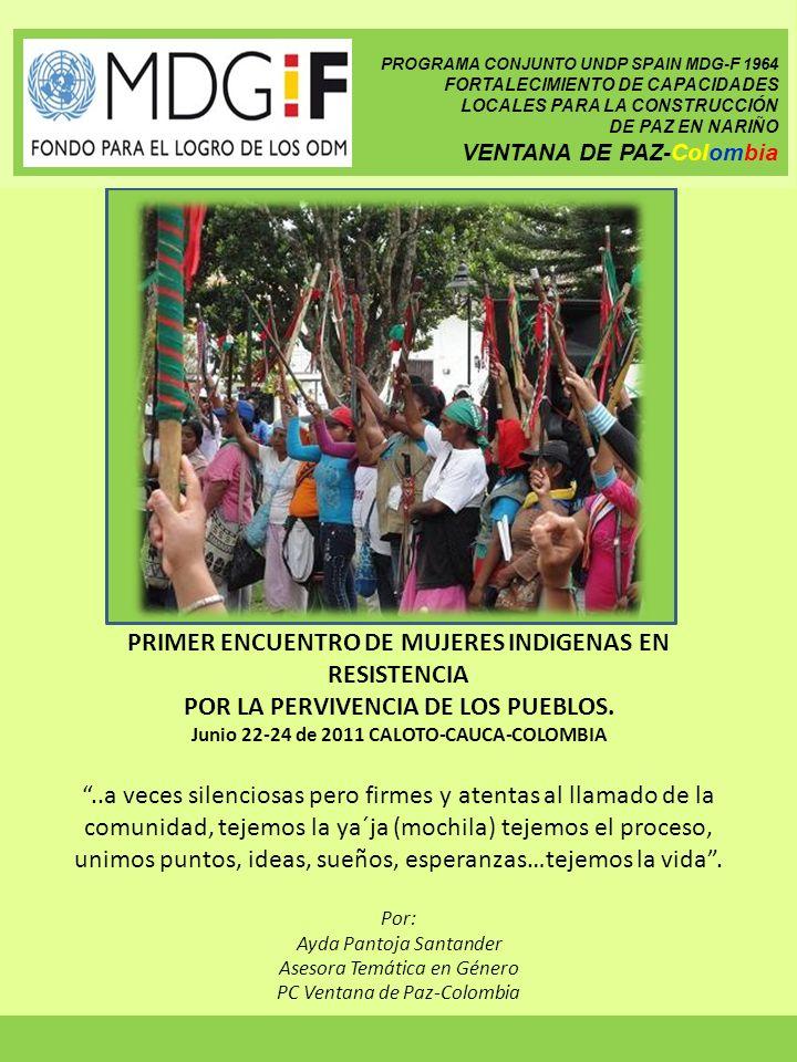 Por invitación del Programa de Mujer de la Asociación de Cabildos Indígenas del Norte de Cauca (ACIN), ONU Mujeres y Ventana de Paz- Colombia hacen presencia y apoyan la participación propositiva de mujeres indígenas de Nariño y Huila en este encuentro de intercambio de saberes y experiencias.
