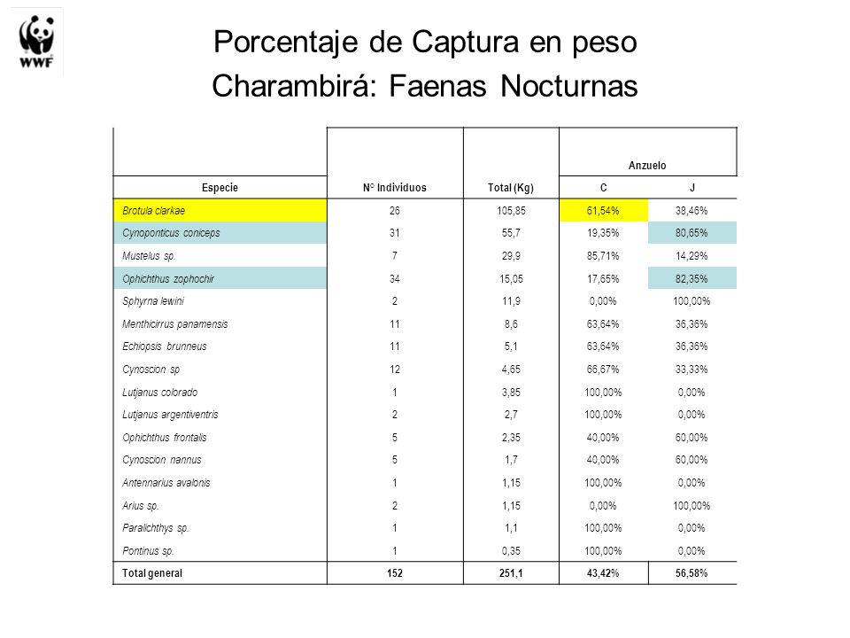 Porcentaje de Captura en peso Charambirá: Faenas Nocturnas Anzuelo EspecieN° IndividuosTotal (Kg)CJ Brotula clarkae 26105,8561,54%38,46% Cynoponticus