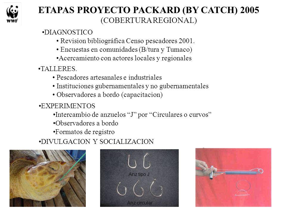 ETAPAS PROYECTO PACKARD (BY CATCH) 2005 (COBERTURA REGIONAL) DIAGNOSTICO Revision bibliográfica Censo pescadores 2001. Encuestas en comunidades (B/tur