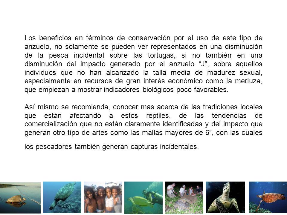Los beneficios en términos de conservación por el uso de este tipo de anzuelo, no solamente se pueden ver representados en una disminución de la pesca