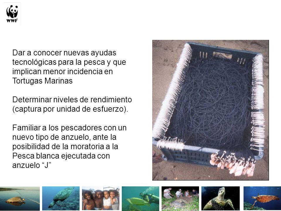 Dar a conocer nuevas ayudas tecnológicas para la pesca y que implican menor incidencia en Tortugas Marinas Determinar niveles de rendimiento (captura