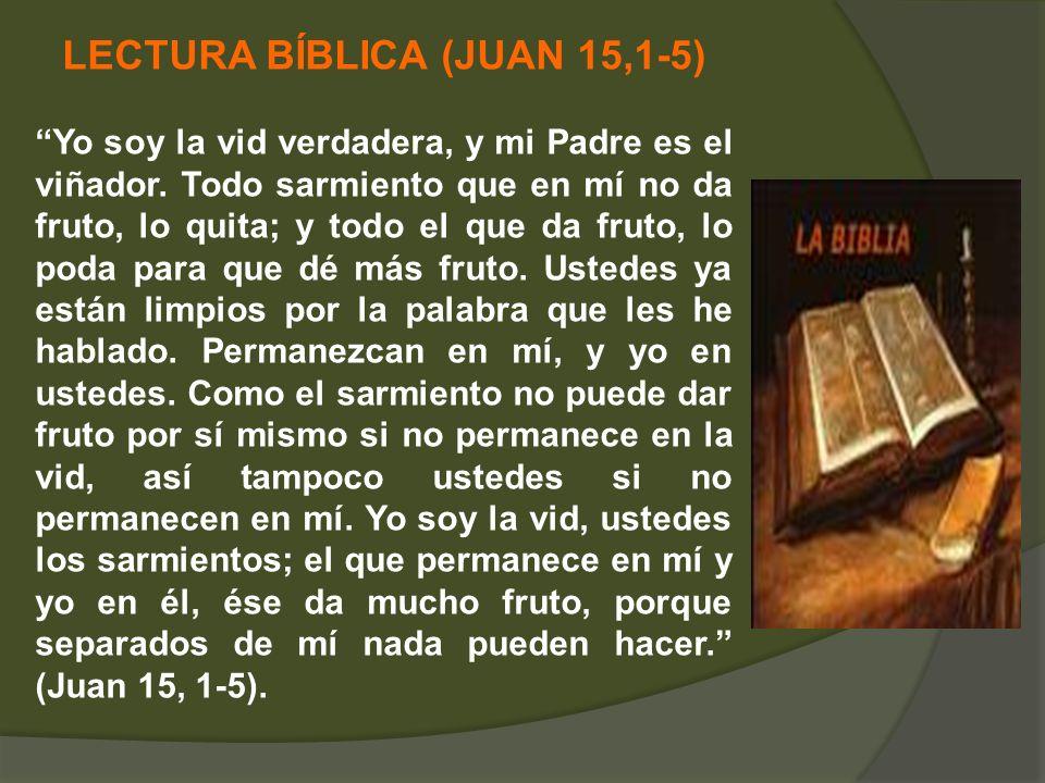 LECTURA BÍBLICA (JUAN 15,1-5) Yo soy la vid verdadera, y mi Padre es el viñador. Todo sarmiento que en mí no da fruto, lo quita; y todo el que da frut